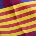 Détail du brassard de capitaine qui reproduit le drapeau de Catalogne sur le tee-shirt FC Barcelona Captain.
