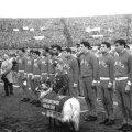 Veste SL Benfica 1960's